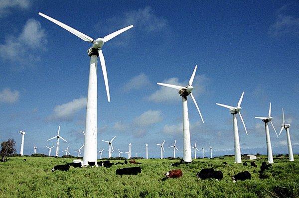 Крупнейшая нефтяная компания Земли перестроится на «мельницы»