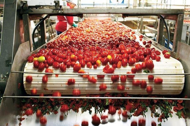 Крупнейший производитель томатной пасты построит завод по сушке овощей