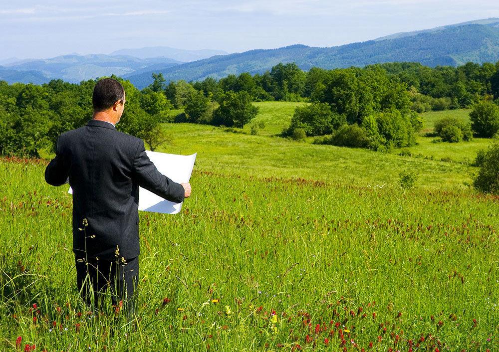 Во Львовской области подали в суд из-за моратория на продажу земли