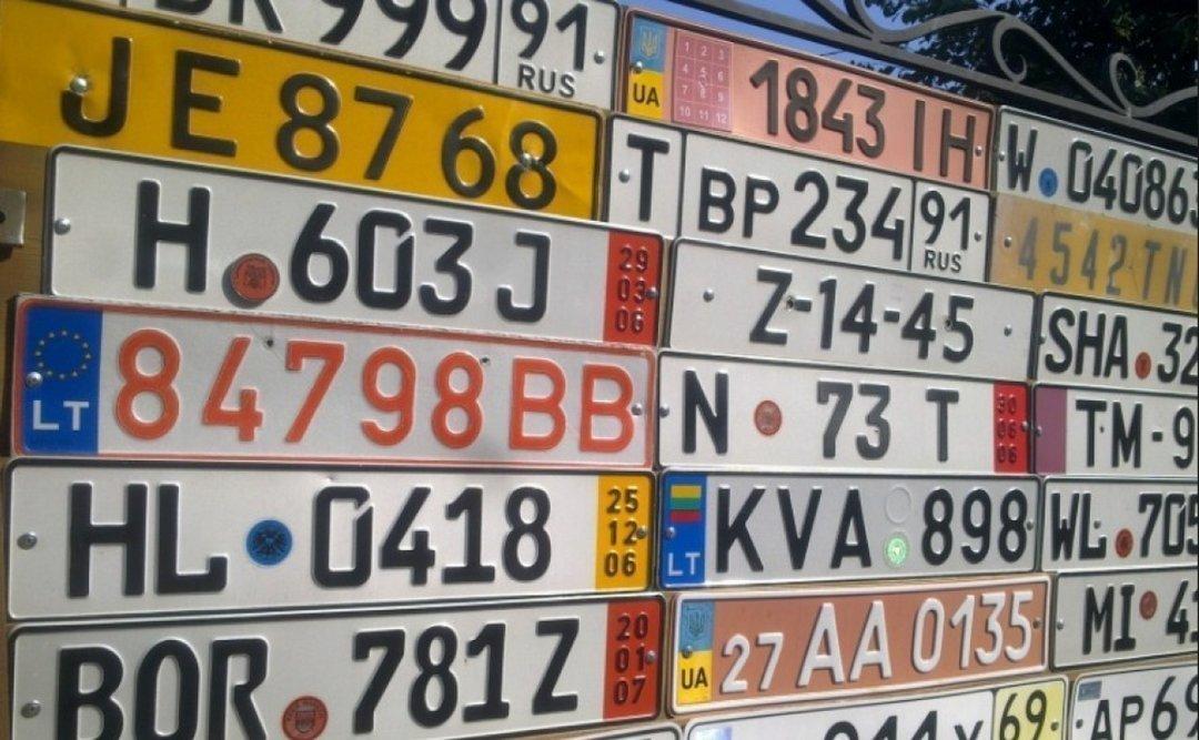 С начала 2018 года в Украину завезли уже более 500 тысяч евроблях — Южанина
