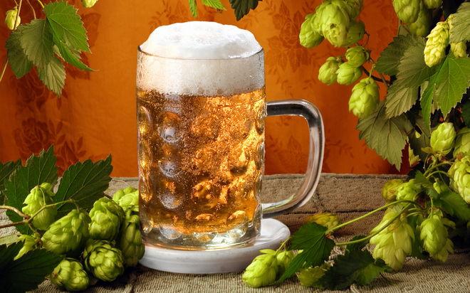Где заказать хмель для производства пива?