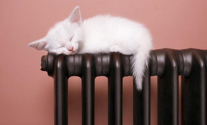 В каких областях больше всего установлено теплосчетчиков в домах