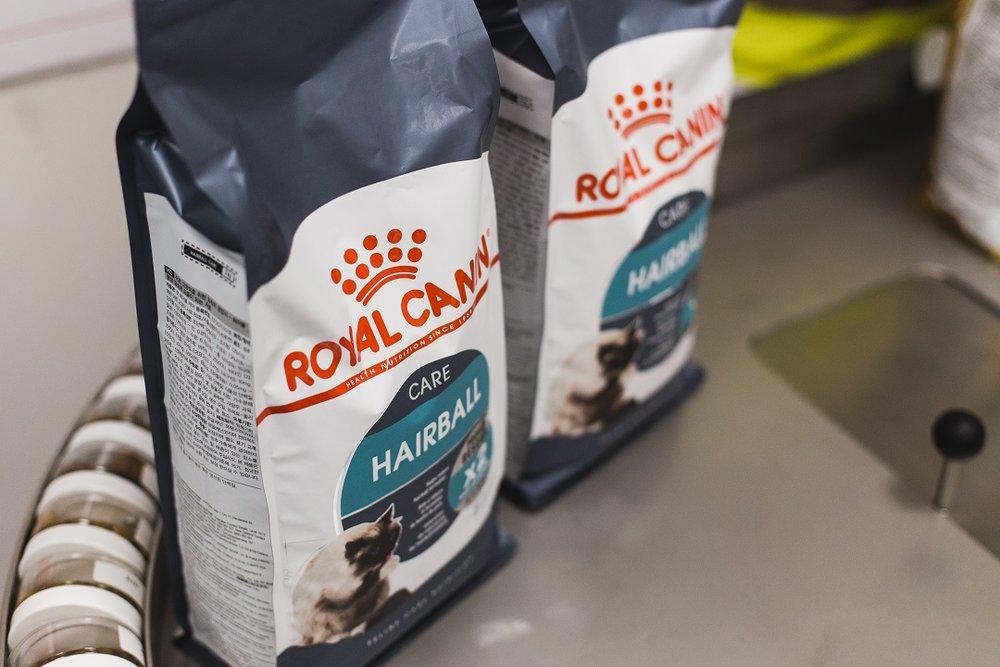 Королевский крокет: как производят корм для домашних животных