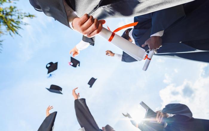 Дипломы для всех и каждого